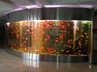 弧形墙面鱼缸