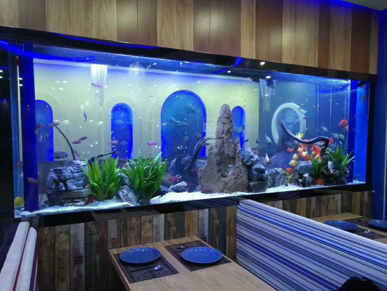 餐厅水族鱼缸