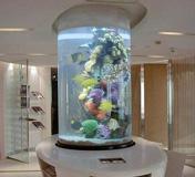 圆柱形鱼缸