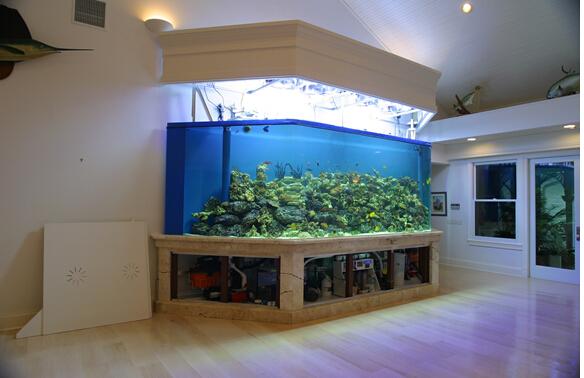 客厅摆放鱼缸需要注意的风水问题
