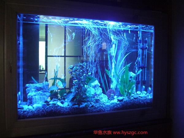 鱼缸照明灯管使用