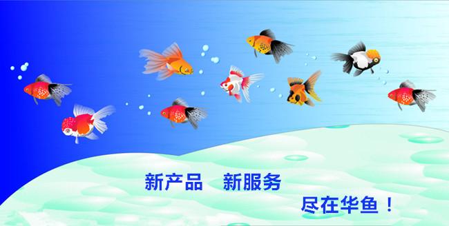 华鱼水族鱼缸产品新上架