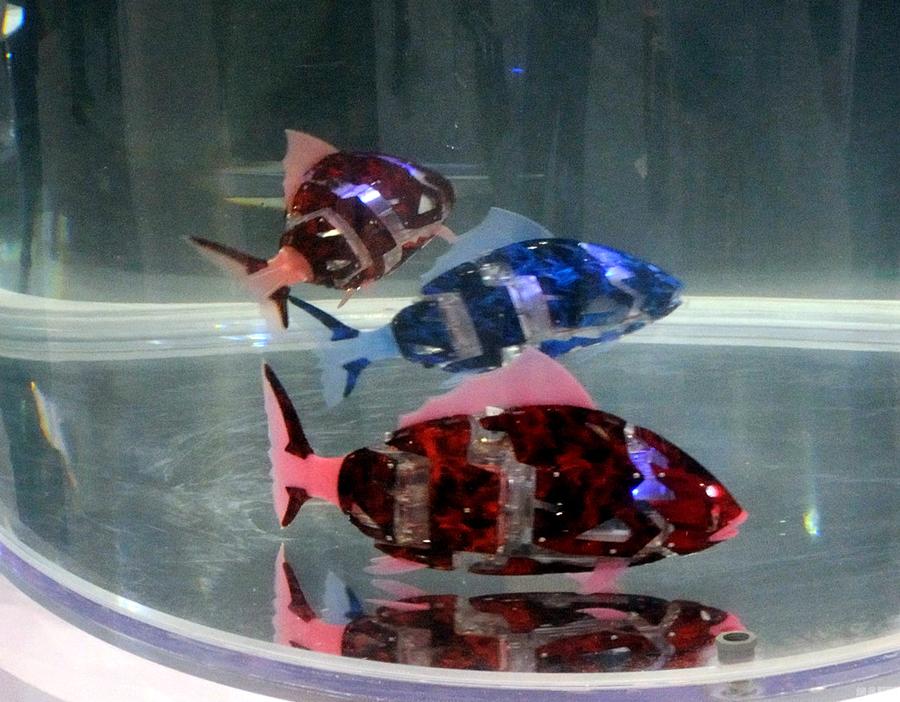 仿生鱼,机器鱼
