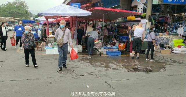 广州观赏鱼批发市场