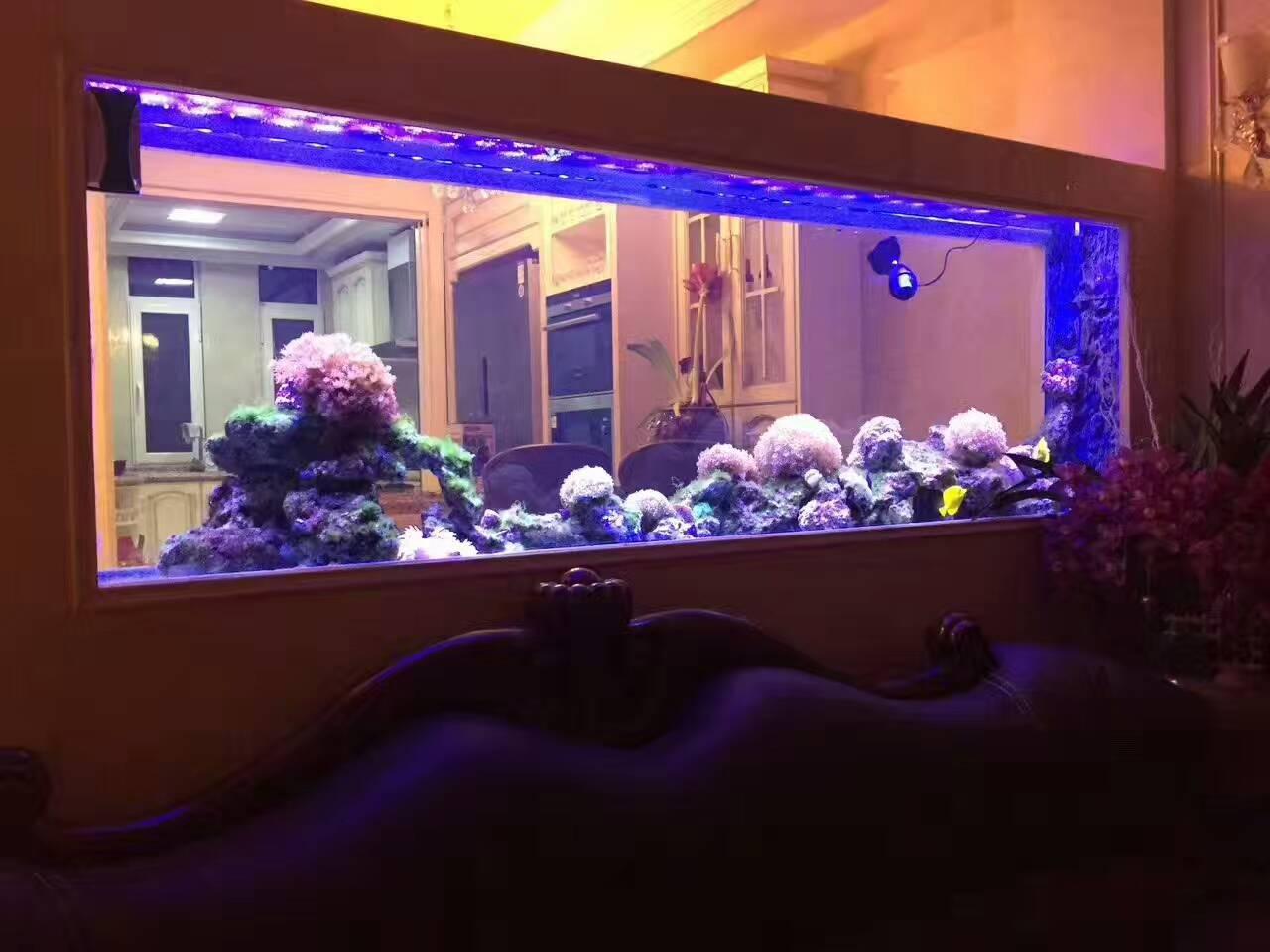 华鱼水族大型鱼缸制作案例