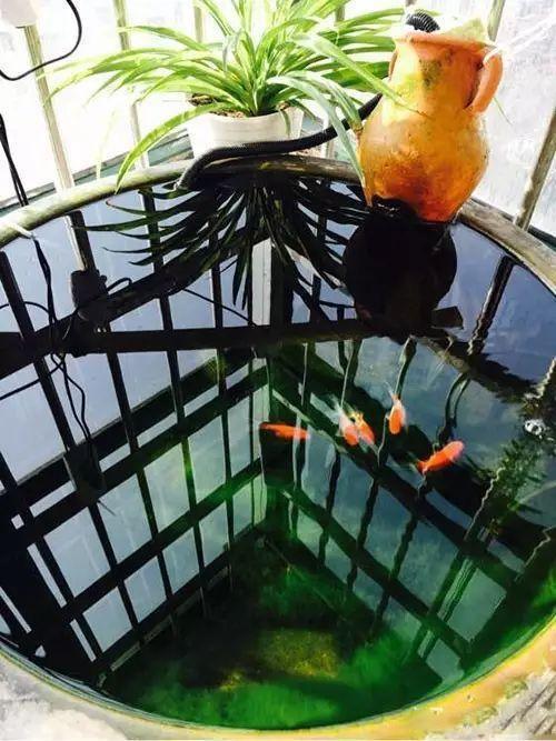想保持鱼缸清洁又不想水流太大,怎么办?看这个过滤系统设计!