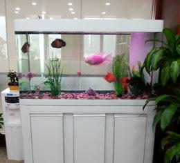 水族鱼缸柜(白色)